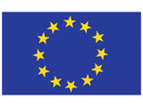 Flag Decal Europe