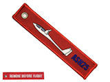 Remove before flight - ASH25