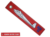 Remove before flight - ASK13